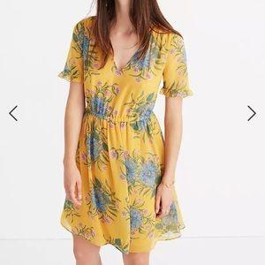 Madewell Sweetgrass Ruffle sleeve dress size 6